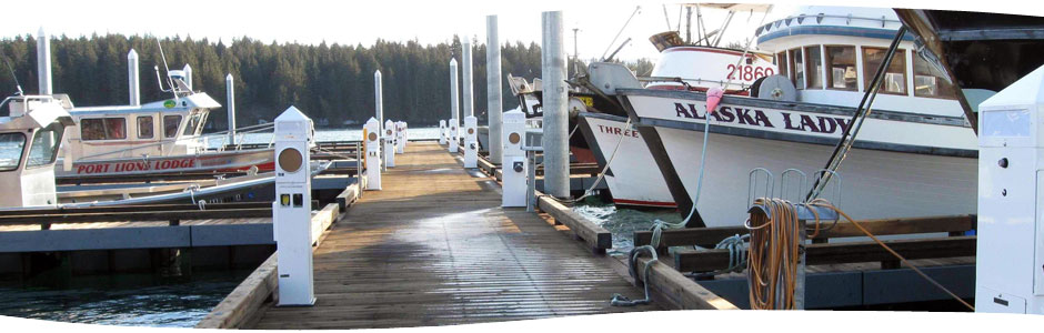 Accmar's metered pedestals in Port Lions, Alaska